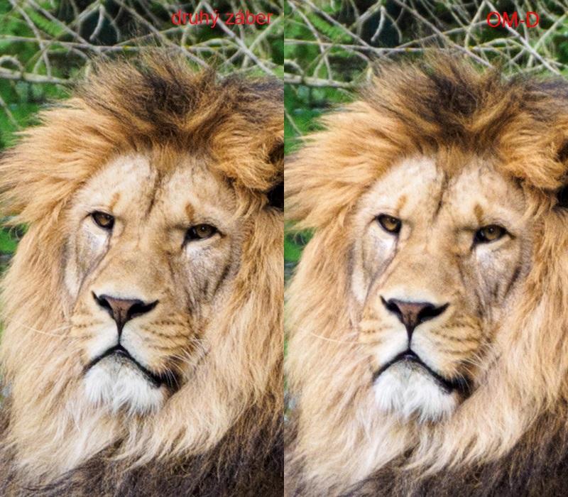 Vpravo: záber vložený do porovnania, vľavo: citeľne ostrejší záber spravený o 3 sekundy neskôr
